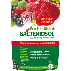 Bactériosol Fraise 500 g