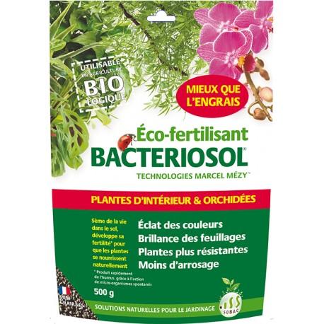 Bactériosol Plantes Intérieur 500 g